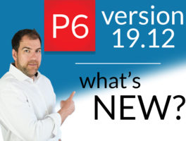Primavera P6 Pro v19.12 is here. Here's What's New.